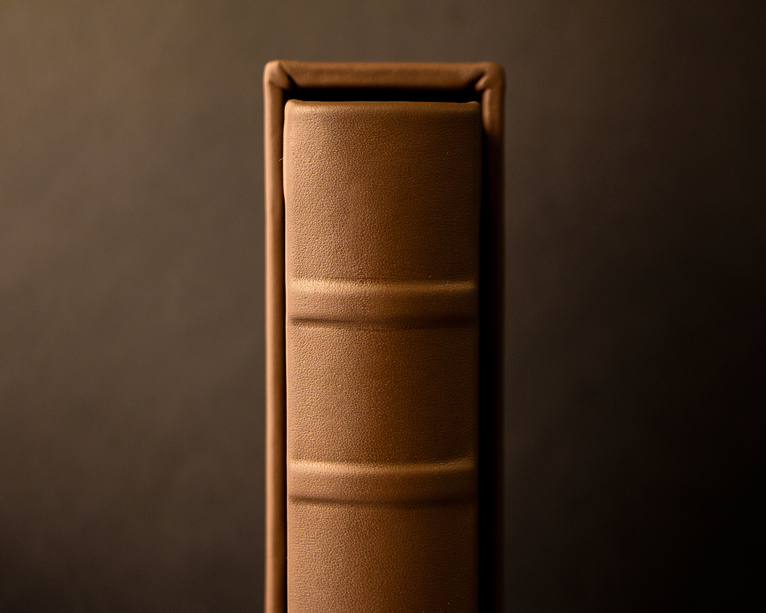 Album In Slipcase Featuring Rounded Spine With Hubs (And No Tooling On The Hubs)